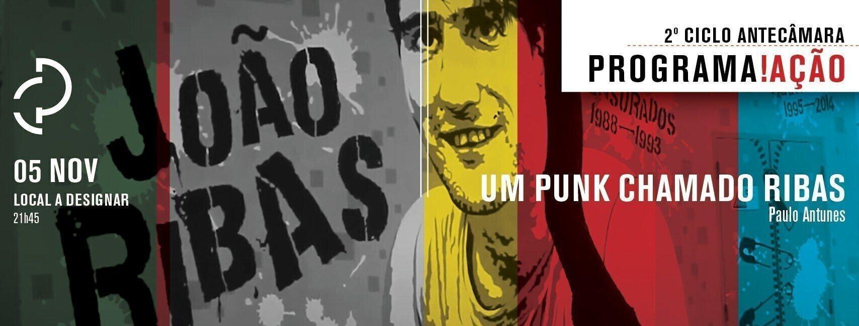 PROGRAMA ACAO BANNER FB15