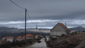 FOJOS, de Anabela Moreira – Selecção Caminhos (2020)